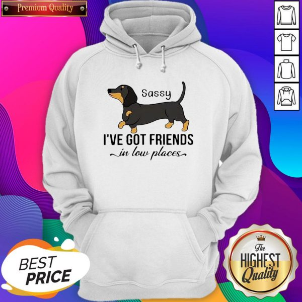 Dachshund I've Got Friends In Low Places Hoodie