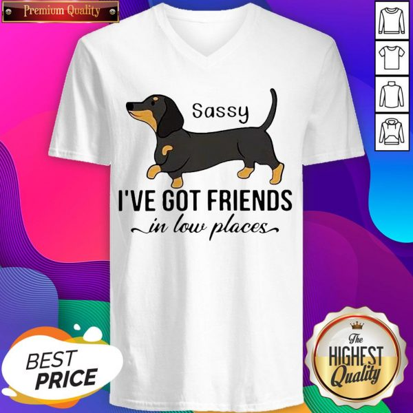 Dachshund I've Got Friends In Low Places V-neck