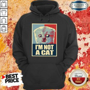 I'm Not A Cat Hoodie